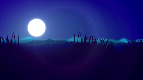 Silhouette of Grass Flowers against a night sky Animation