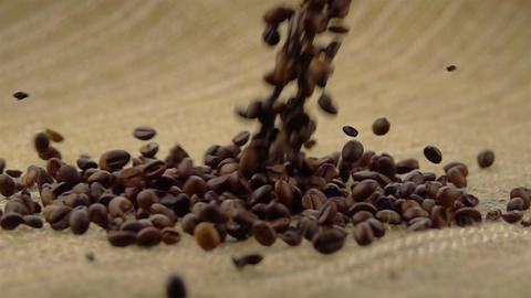 Coffee Beans Falling on the Sack ビデオ