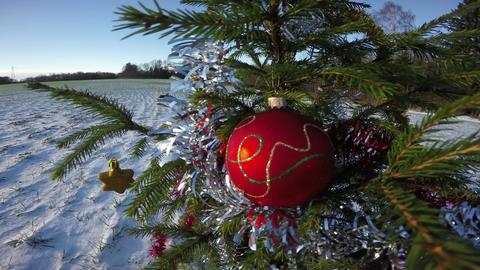 Christmas tree in snowy field in wind, 4K Filmmaterial