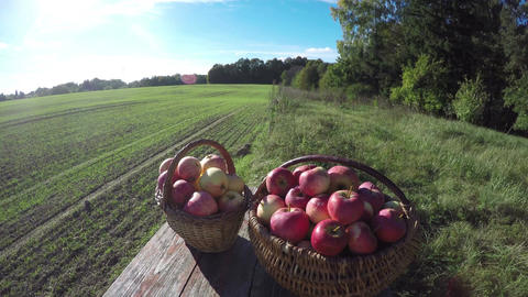 Apples in two wicker baskets on wooden table in the autumn, time lapse 4K Footage
