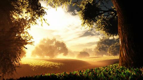 Amazing Natural Wonderland in the Sunset Sunrise 1 Animation