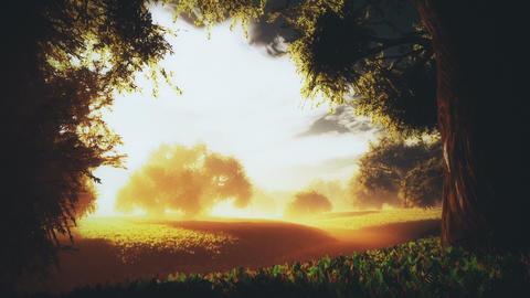 Amazing Natural Wonderland in the Sunset Sunrise 3 Animation