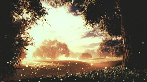 Amazing Natural Wonderland in the Sunset Sunrise with Fireflies 4 Animation