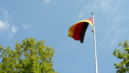 German (Federal Republic of Germany) flag - green trees - blue sky - sunny Footage