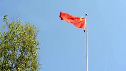 China flag - green tree - blue sky - airplane - sunny Footage