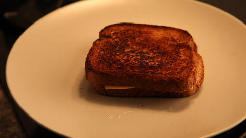 Grilled Cheese Sandwich placed on a plate Stock Video Footage