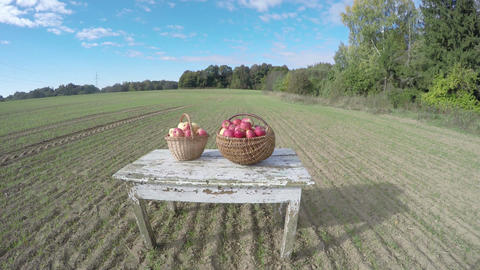 Apples in two wicker baskets on white wooden table in the autumn, time lapse 4K ビデオ