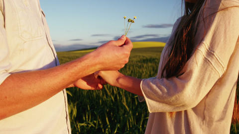 Man offering flower to woman in field Footage