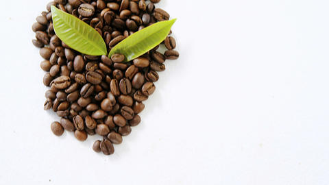 Roasted coffee beans with coffee leaves Live Action
