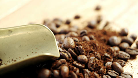 Coffee beans with powder and scoop Live Action
