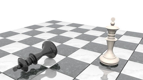 Two chess figures on the playing field. White king is a winner and a loser black Animation