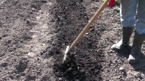 Gardener wearing black rubber boots raking soil Footage