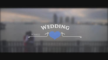 Wedding Titles Pack
