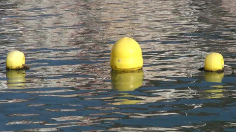Yellow floaters on the water Footage