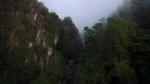 Aerial shot of a tropical rain-forest. and mist in morning Footage