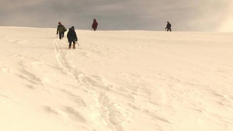 Climbers walk Live Action