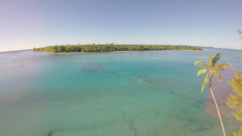Aerial view of a tropical island with palm tree in foreground - Tetiaroa, Tahiti Footage