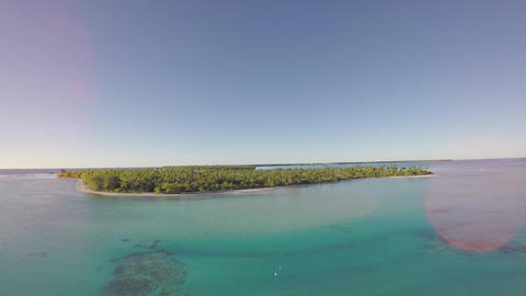 Aerial view of a tropical island and palm tree - Tetiaroa, Tahiti, French Polyne Footage