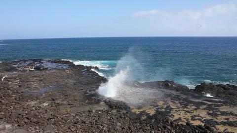 Spouting Horn Kauai Live Action