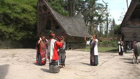 Traditional dance in village Live Action