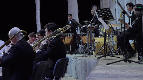 Philarmonic Orchestra concert Footage