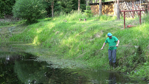 man clean pond overgrown weed with raker village summertime. 4K Live Action