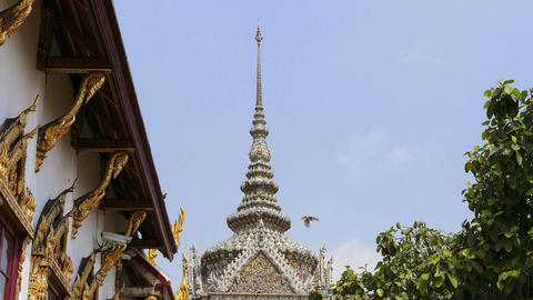 Bangkok Thailand Wat Grand Palace BuddhismTemple Birds 4k Footage