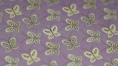 Butterfly Paper Background Footage
