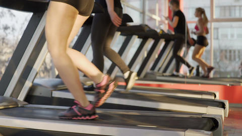 Slim legs of sportive young women training on treadmill in gym, active lifestyle Footage