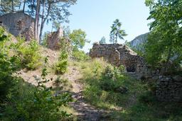 Medieval ruin Schrattenstein フォト