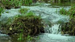 Mountain stream Filmmaterial