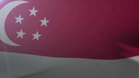 Flag of Singapore waving on flagpole in the wind, national symbol of freedom Footage