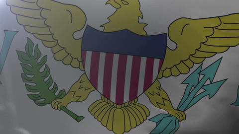 Flag of U.S. Virgin Islands waving in the wind, national symbol of freedom Footage