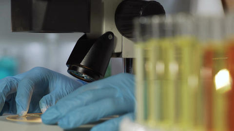 Researcher putting sample slide under microscope, adjusting lenses to study it Live Action