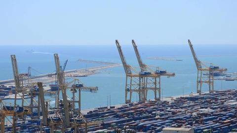 Industrial Port Cranes Live Action