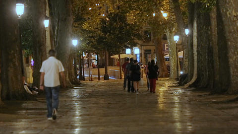 Young people strolling in city park at night, friends hanging out, urban life Footage