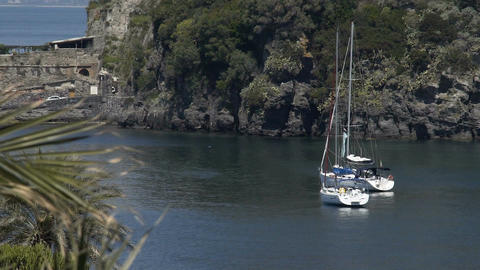 Two pleasure yachts sailing in nice harbor near green island, romantic vacation Footage