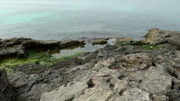 Spain Mallorca Island Cala Blava 002 rocky shore with green algae Footage