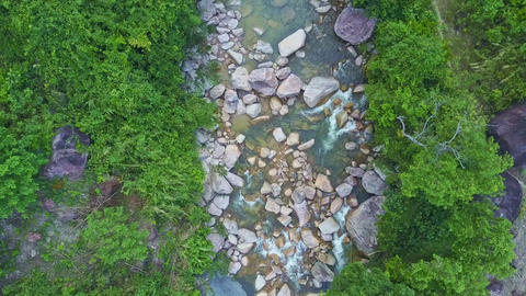 Camera Moves over Stream with Trees Reflected in Water Footage
