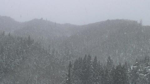 Heavy Snow Fall / Winter / Mountains - Shizukuishi (Iwate, Japan) - Fix Filmmaterial