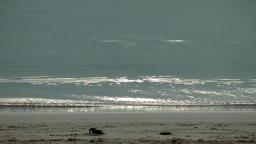 Spain Mallorca Island Palma Can Pastilla 012 glittering waves at the beach Footage