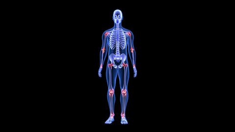 Joint Pain. Blue Human Anatomy Body 3D Scan render - rotating seamless loop Animation
