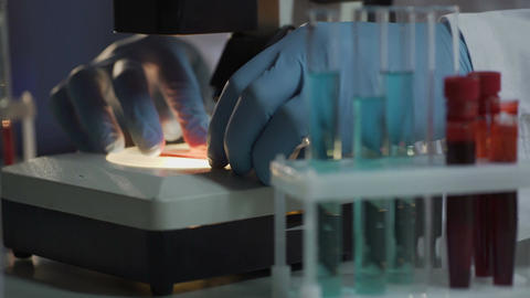 Illegal lab engaged in experimental medicine conducting tests on animals Footage