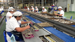 A Poveira Canning Factory Laundos Portugal stock footage