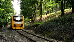 train passing through the forest from the tunnel Footage