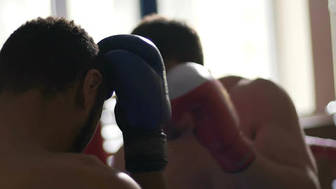 Fierce boxing fight between two powerful competitors, men sparring, slow-mo Live Action
