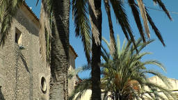 Spain Mallorca Island mountain village Montuiri 011 Palm trees on church yard Footage