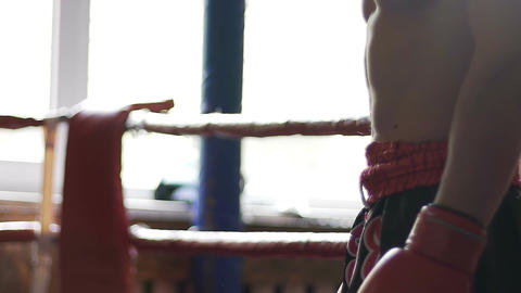 Torso of strong athlete in boxing gloves, strong fighter waiting for next round Footage