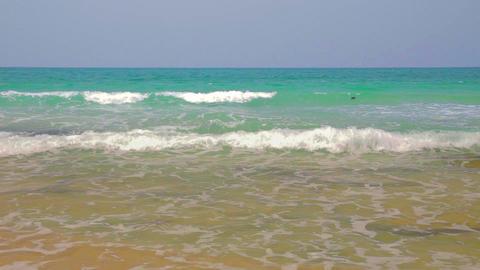 Calm exotic seashore Stock Video Footage