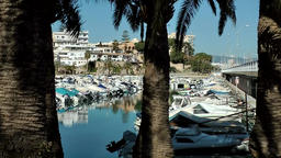 Spain Palma de Mallorca 075 Inner harbor behind palm trees opposite of marina Footage